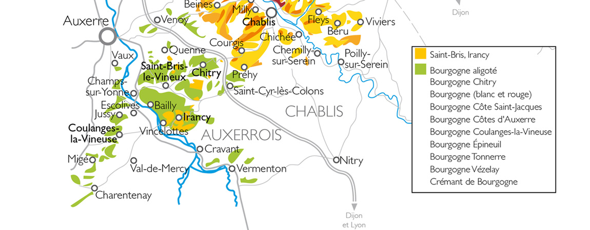chablis vignoble auxerrois pays coulangeois yonne coulanges la vineuse irancy pinot noir chardonnay césar